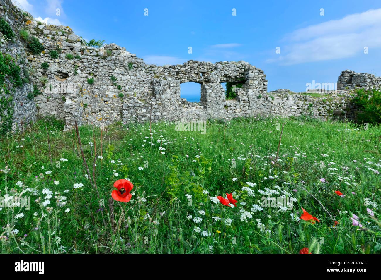 Rozafa castle, Ramparts and Poppies, Shkodra, Albania - Stock Image