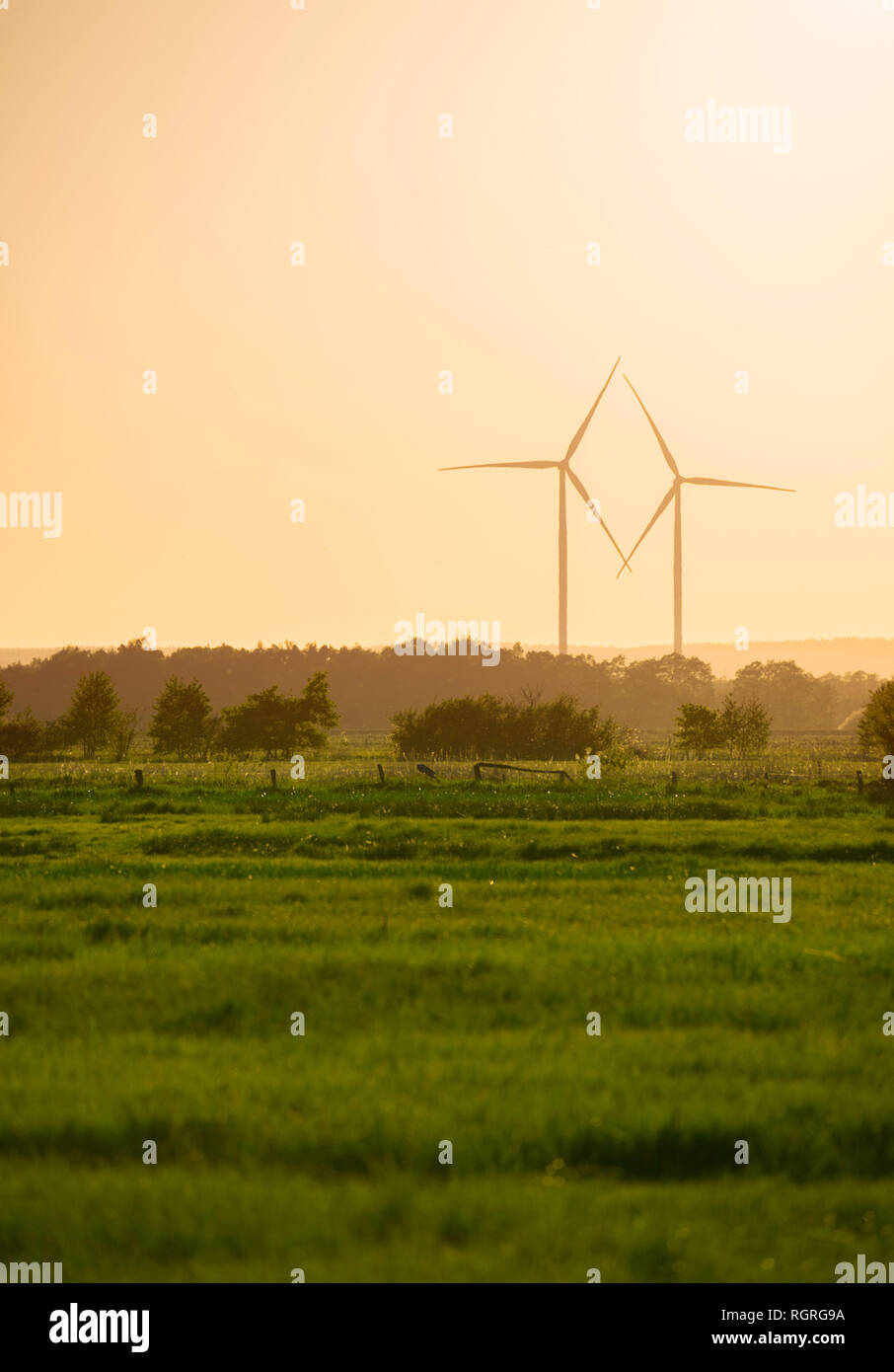 wind wheels, nature reserve Ochsenmoor, Huede, Diepholz, Lower Saxony, Germany, Europe - Stock Image