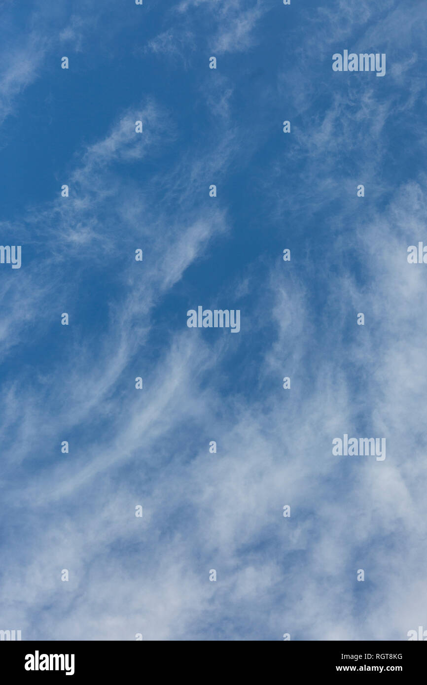 Bright Blue sunny sky with white fluffy clouds floating across on a bright sunny day in England, UK - Stock Image