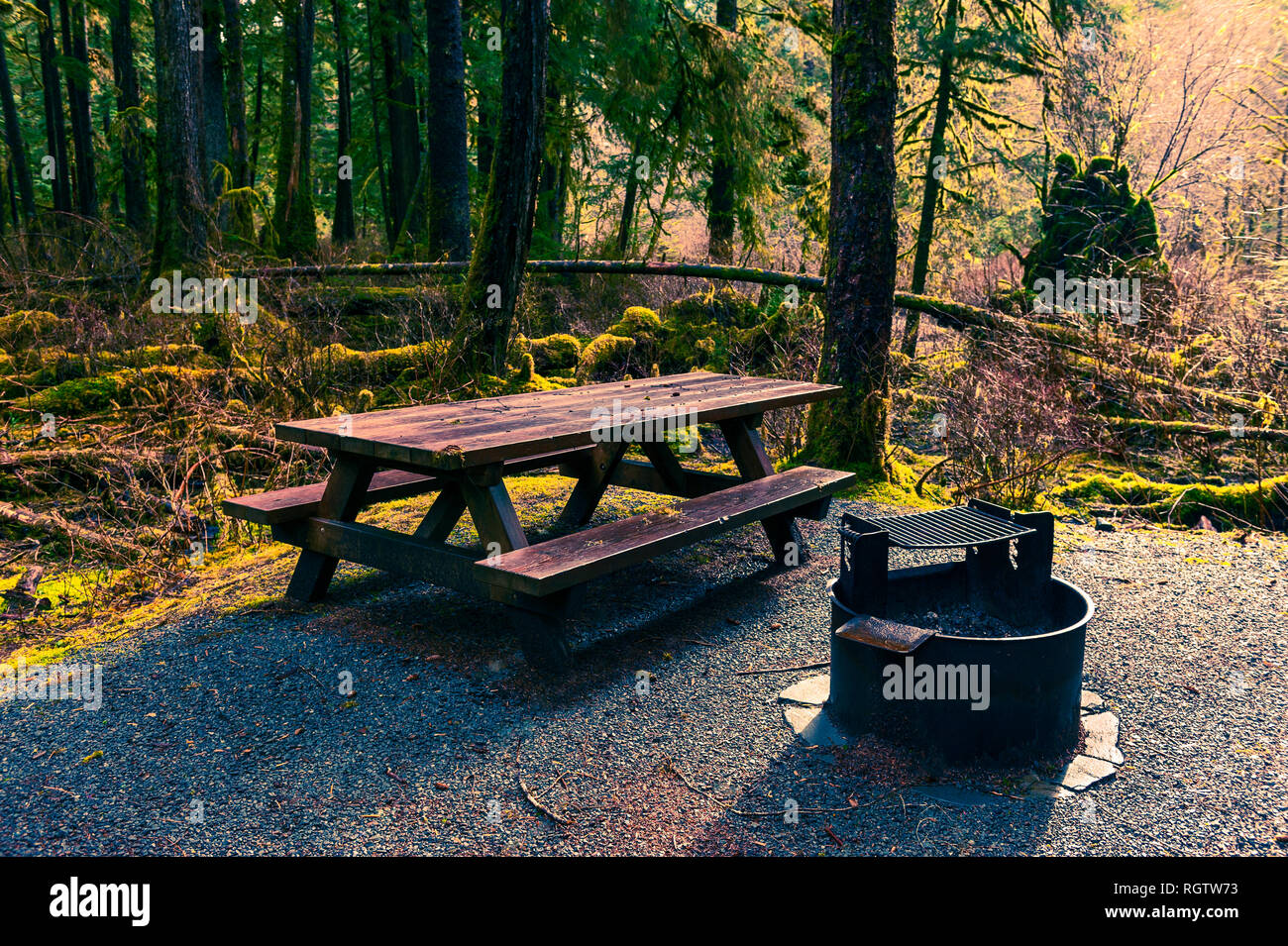Campsite in the Starrigavan Recreation Area -- Tongass National Forest near Sitka, Alaska, USA.  Photography by Jeffrey Wickett, - Stock Image