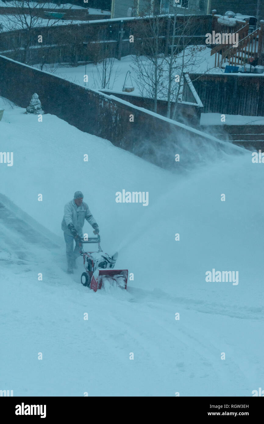 Homeowner uses motorized snow blower to move snow along sidewalk and driveway from winter snowstorm, Castle Rock Colorado US. Photo taken in January. - Stock Image