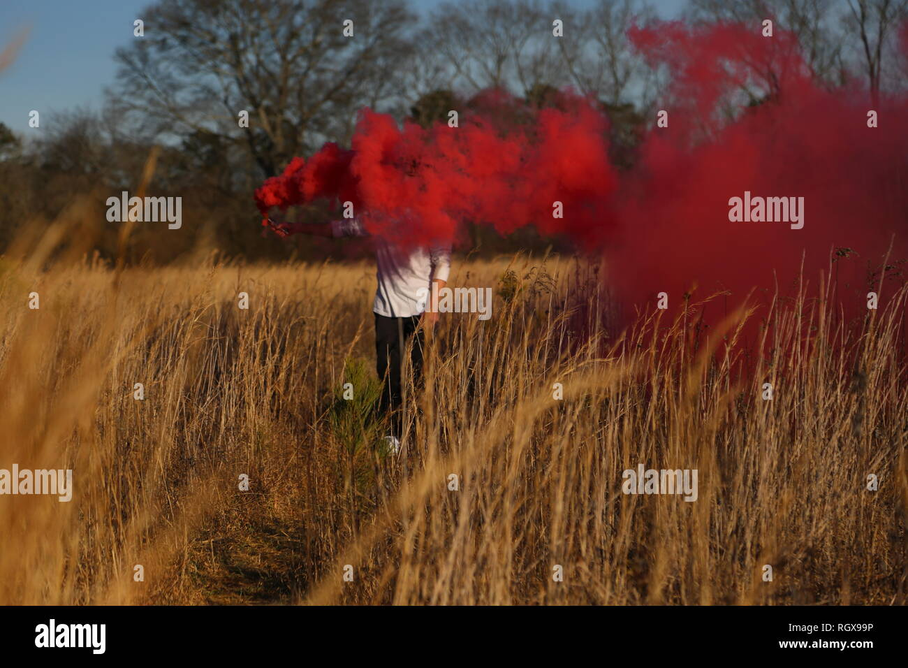 Smoke Photography in a wheat field - Stock Image