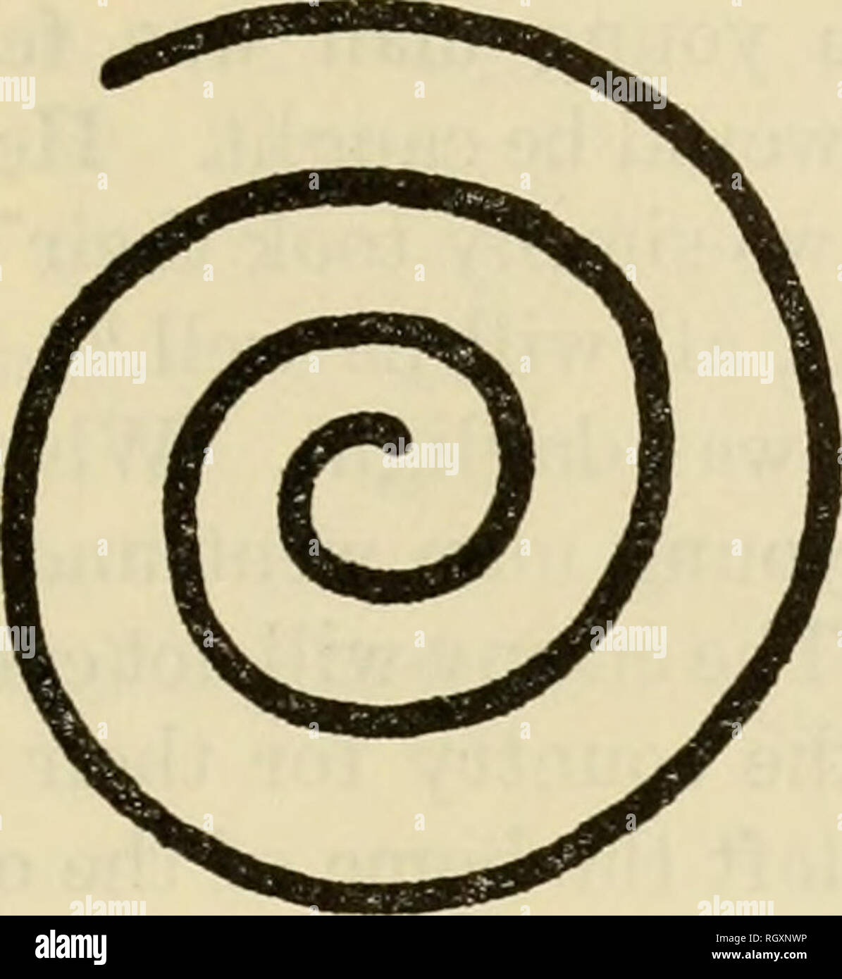 Spiral Symbol Meaning Native American Wwwtopsimagescom