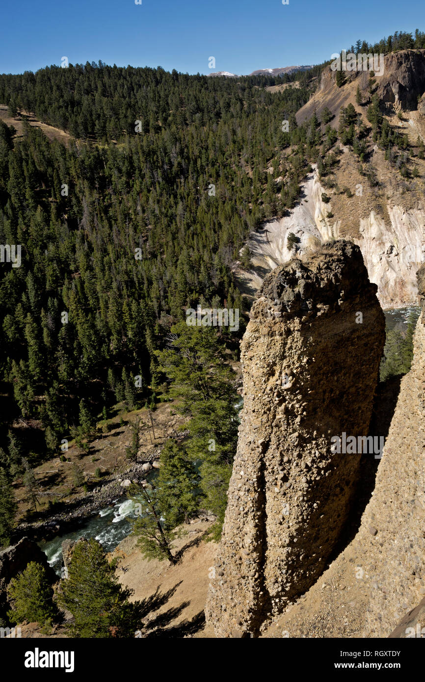 WYOMING - A basaltic column along the canyon walls above the Yellowstone River from the Yellowstone River Picnic Area Trail in Yellowstone Natl. Park. - Stock Image
