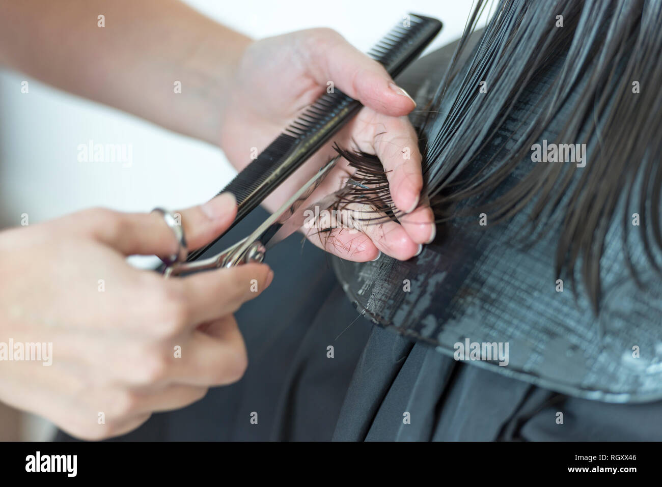 Woman Cutting Hair in a Hairdresser Salon. - Stock Image