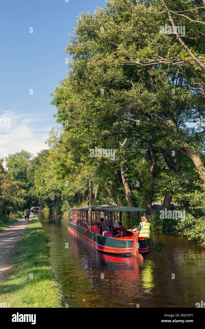 Llangollen, Denbighshire, Wales, United Kingdom.  Boats on the Llangollen canal.  These craft, known as narrowboats, were designed specifically for th - Stock Image
