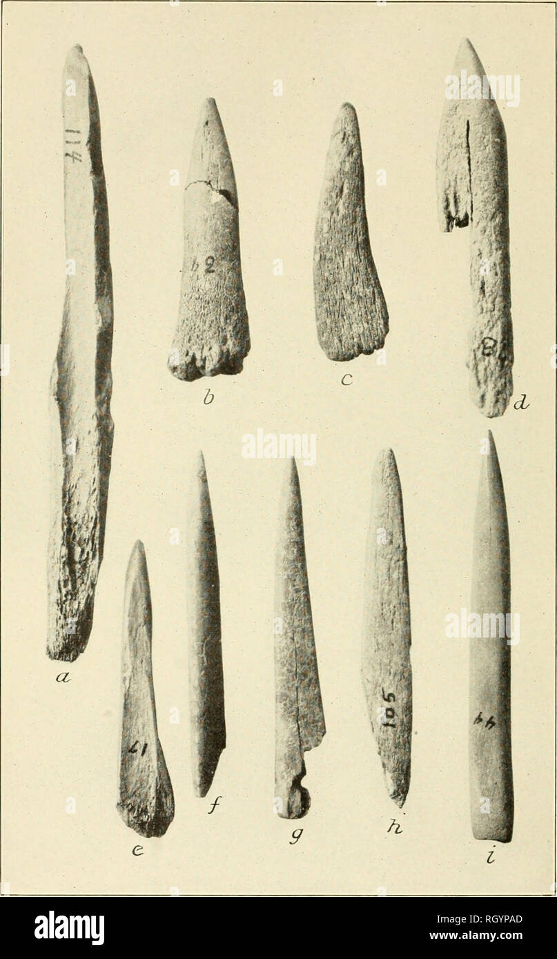 BUREAU OF AMERICAN ETHNOLOGY BULLETIN 92 PLATE 23 BONE IMPLEMENTS PUNCHES A Measures 5i Inches 1397 Cm In Length Please Note That These Images Are