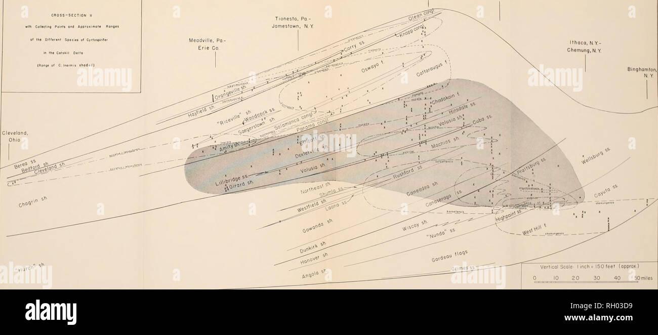 240 Volt Wiring Diagram Bing Images