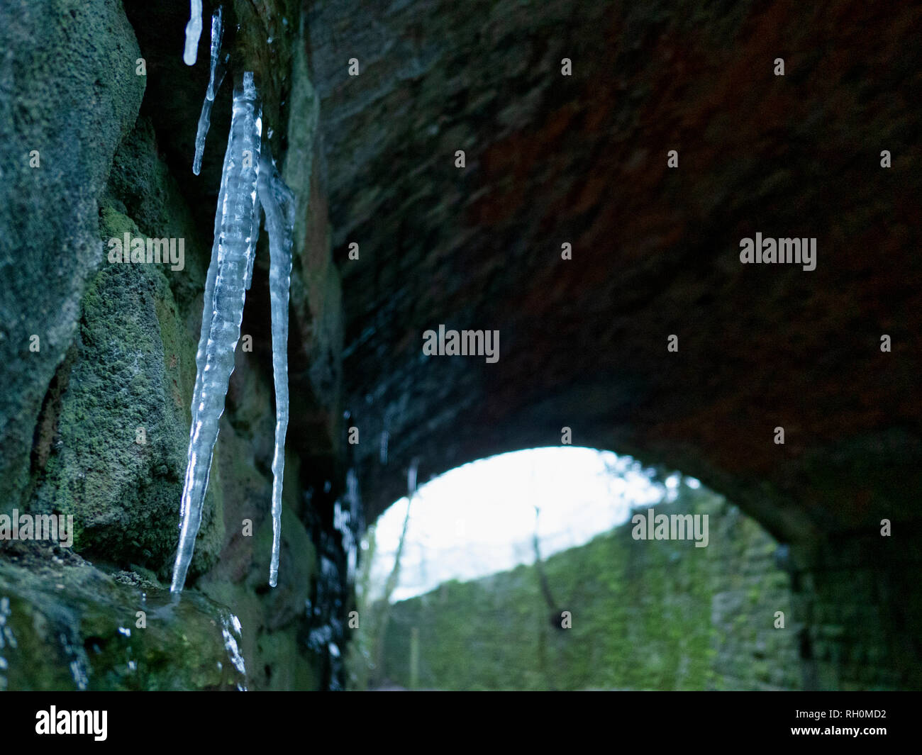 Wirksworth, Derbyshire Dales, UK. 31st January, 2019. UK Weather: Foot long icicles dangling inside an old mining incline railway bridge on a very cold winter day, The National Stone Centre, Wirksworth, Derbyshire Dales Credit: Doug Blane/Alamy Live News Stock Photo