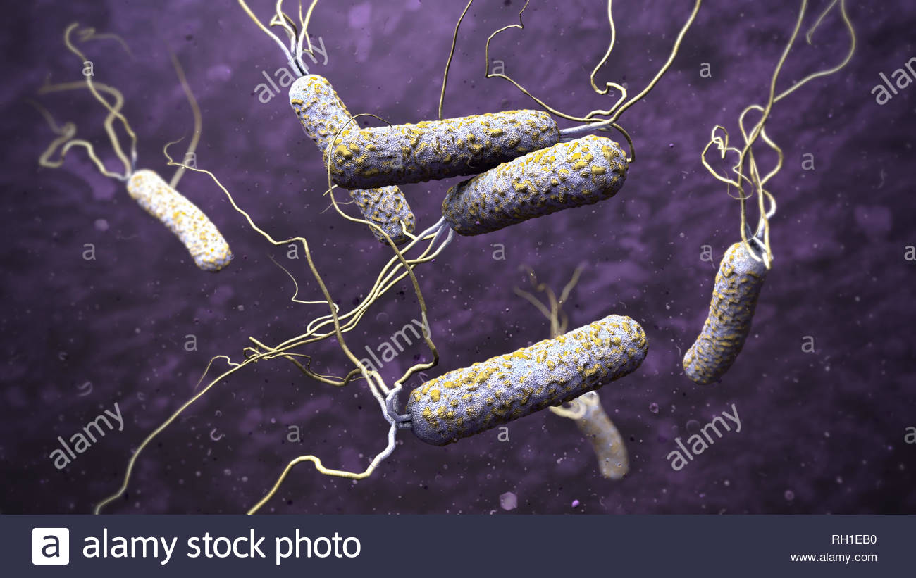 3d illustration of cholera pathogens in dark polluted water - Stock Image