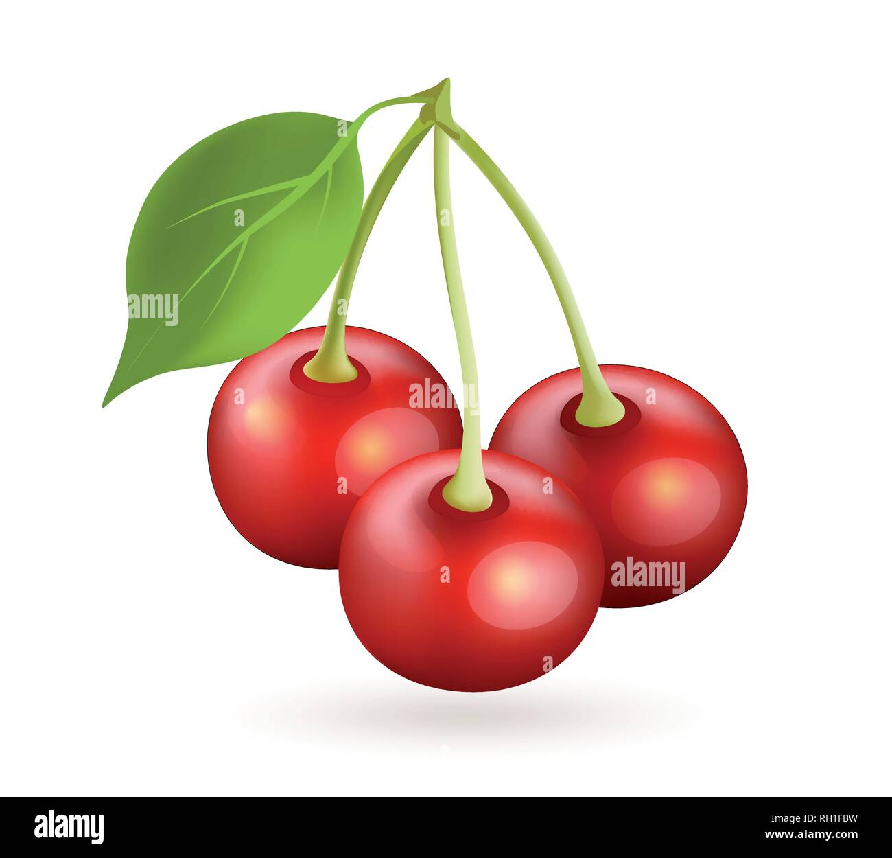 Cherry realistic vector icon isolated on white - Stock Vector