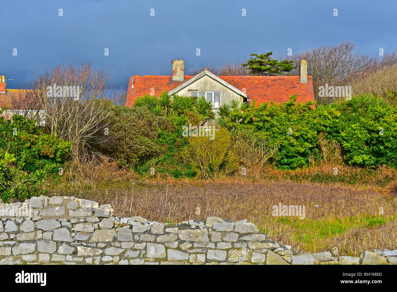 Mystery house in Porthcawl. Building is in rundown condition but occupies a fabulous large plot (overgrown) in the most expensive area of town. - Stock Image