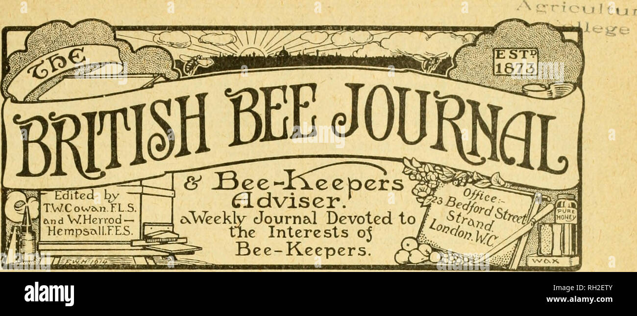 """. British bee journal & bee-keepers adviser. Bees. British Bek Journal and Bee-keepbes' Adviser, Julj- 20, 1916]. No. 1778. Vol. XLIV. N.S. 1386.] JULY 20, 1916. IPublished every Thursday, Price Id. coni^^iitirrs. fAQE Petroleum for """"Isle of Wight"""" Disease ..;. 224 •Boys and Bees 224 Altopts Territorial's Amlising Capjure of a Swarm 224 An Out-Apiary in 1916 225 Swarming Troubles 225 paqb 226 Potted Hpoongyi Correspondence :— An Amateur's Treatment of """" Isle of Wight"""" Disease 227 The Nyasa Bee 228 Notices to Correspondents 230 Bee Shows to Come 230 TAYLOR'S MAKE of ENGL - Stock Image"""