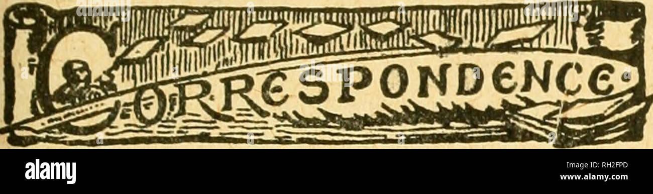 British bee journal & bee-keepers adviser  Bees  Nov  2, 1916 ] THE