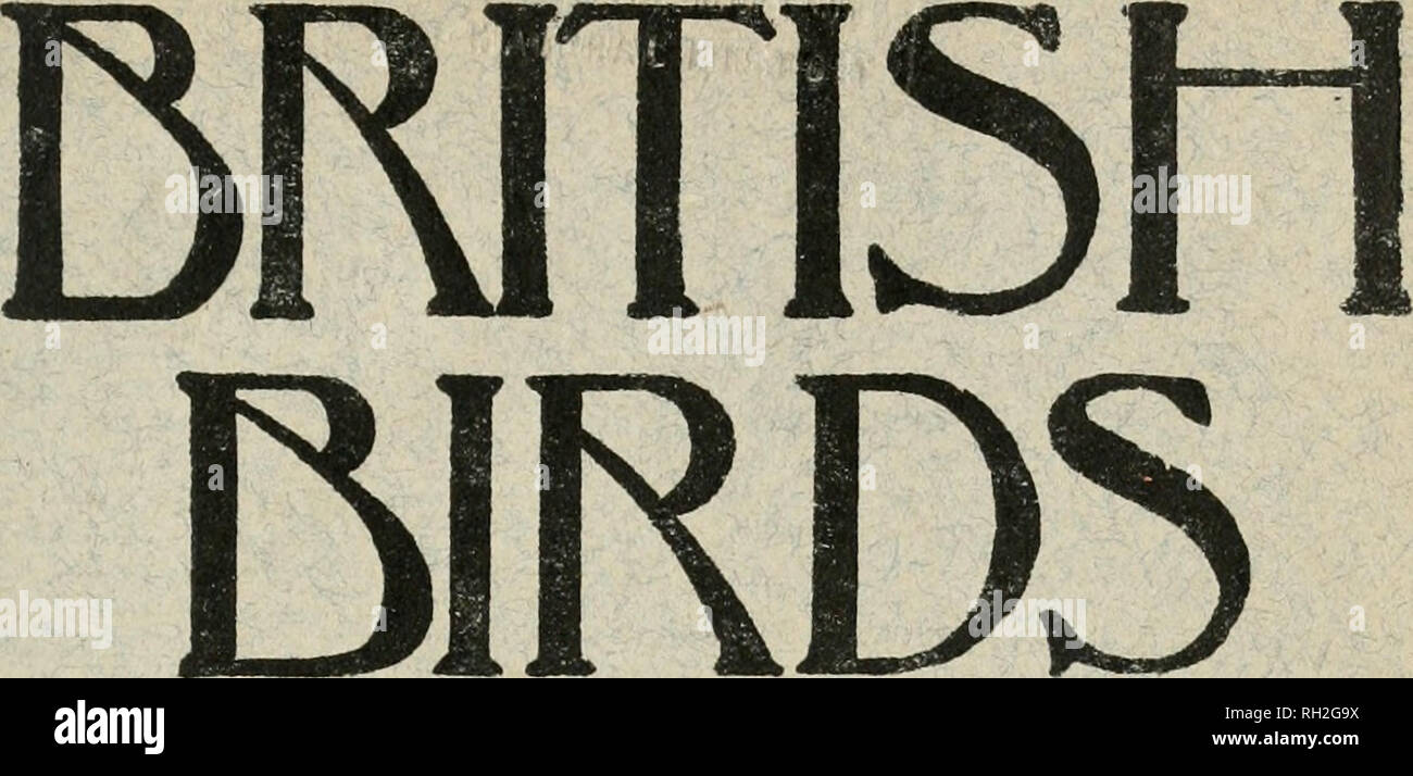 . British birds. Birds. AISEUSTP^^rCDtlAGiVZinE ^^^NTIlEDRTISn USX JUNE 1. 1922. Vol. XVL No. 1.. Please note that these images are extracted from scanned page images that may have been digitally enhanced for readability - coloration and appearance of these illustrations may not perfectly resemble the original work.. London, Witherby & Co - Stock Image