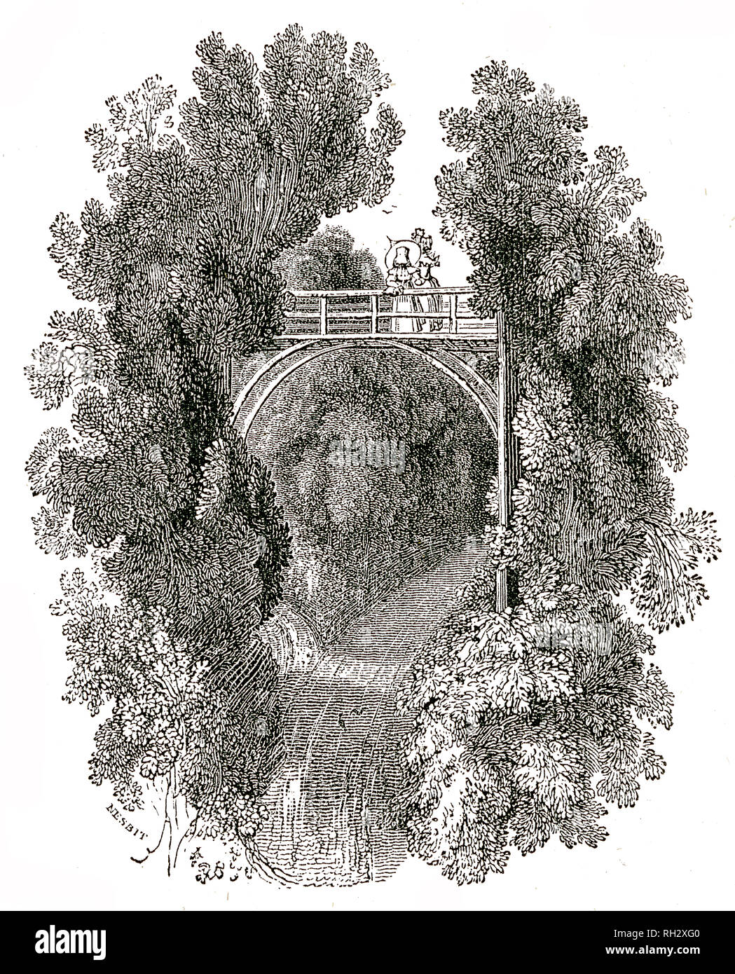 Taken From 'The Natural History of Selborne' By The Rev Gilbert White, 1875 Edition - Stock Image