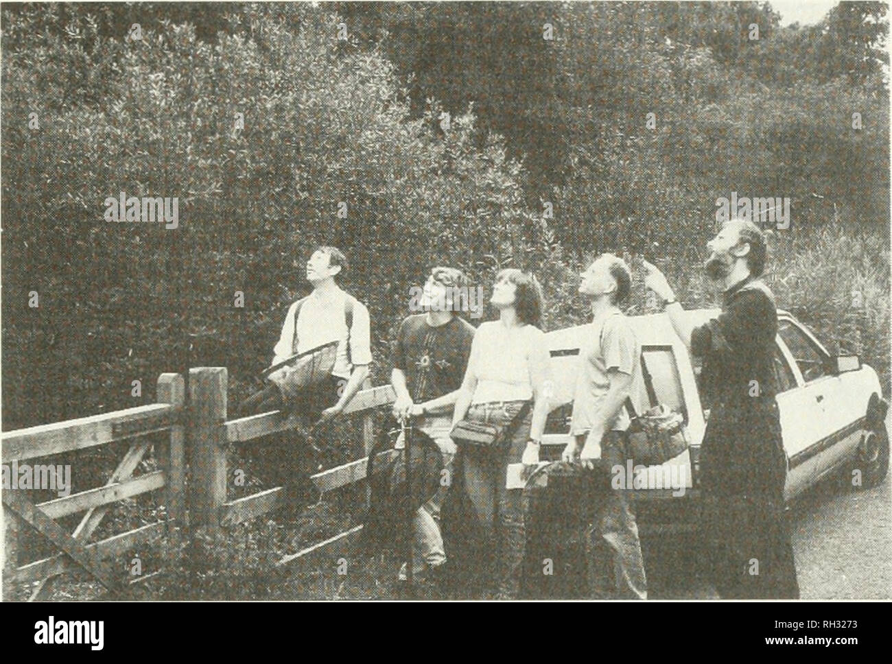 . British journal of entomology and natural history. Natural history; Entomology. BR. J. ENT. NAT. HIST., 5: 1992. Fig. 1. Some of the day-time party watching a group of migrant hawker dragonflies, Aeshna mixta, by the entrance to Jackson's Covert. Left to right: Gavin Boyd, Peter Tebbutt, Diana and Peter Sharpe, and the warden of the reserve, Alan Bowley. Photo P. Waring. during the week and one could probably have counted a hundred or more by walking along these dykes. The peacocks were joined by a few small tortoiseshells Aglais urticae L., large and small whites Pieris brassicae L. and P.  - Stock Image