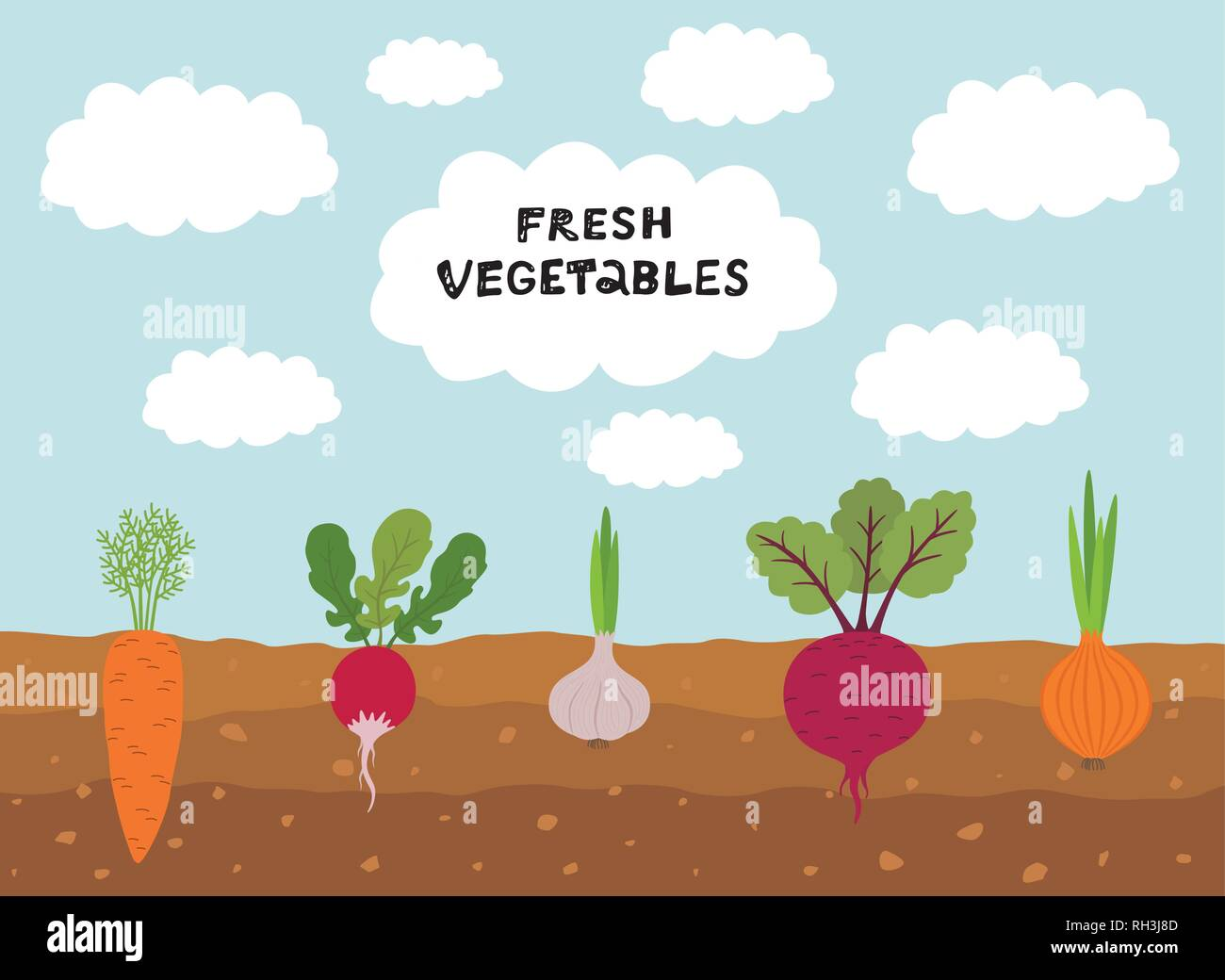 Fresh organic vegetable garden on blue sky background. Set vegetables plant growing underground carrot, onion, garlic, radish, beet. - Stock Vector