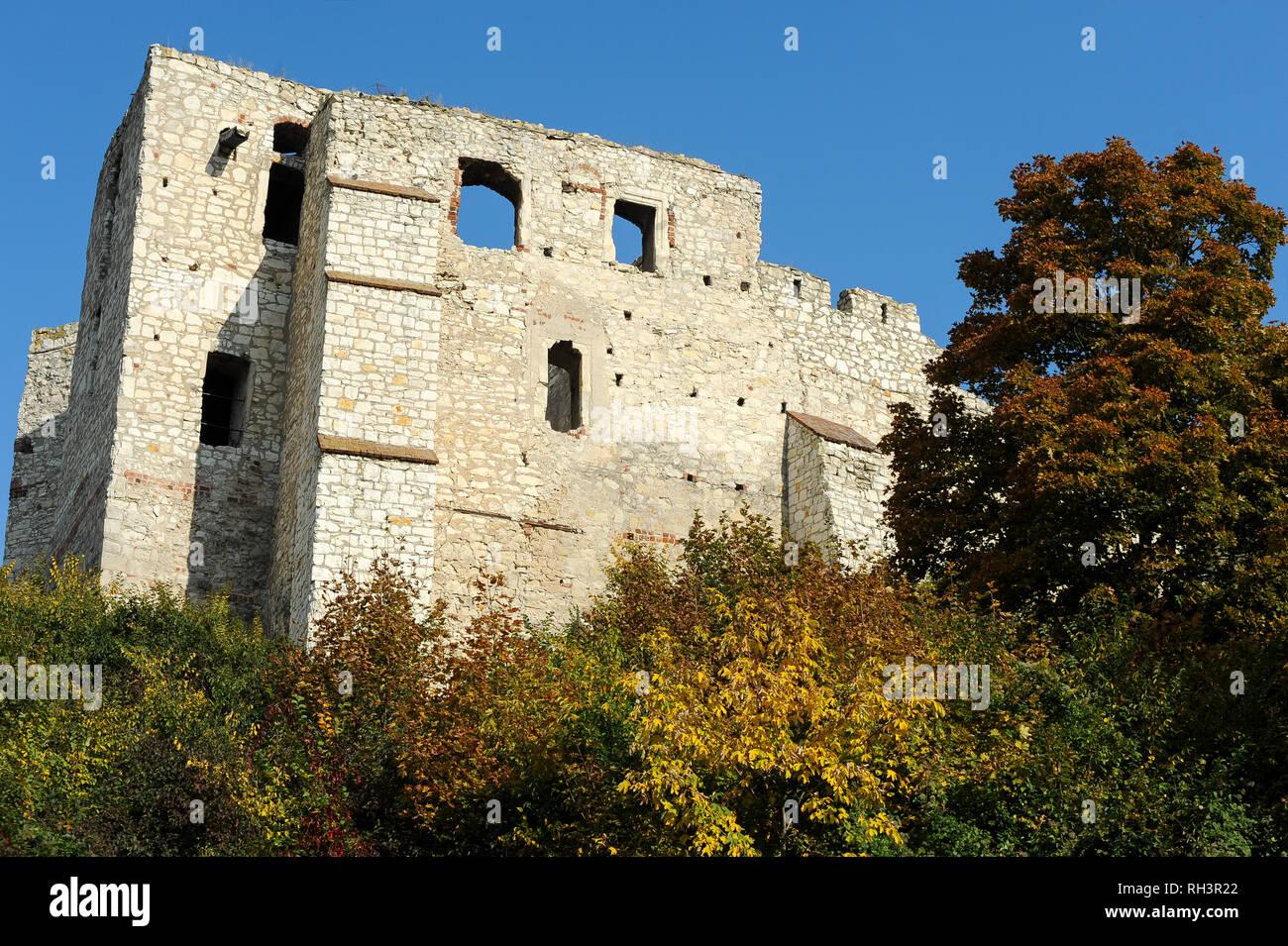 Ruins of Gothic castle built in XIV century by Polish King Kazimierz Wielki in Kazimierz Dolny, Poland. October 8th 2008 © Wojciech Strozyk / Alamy St - Stock Image
