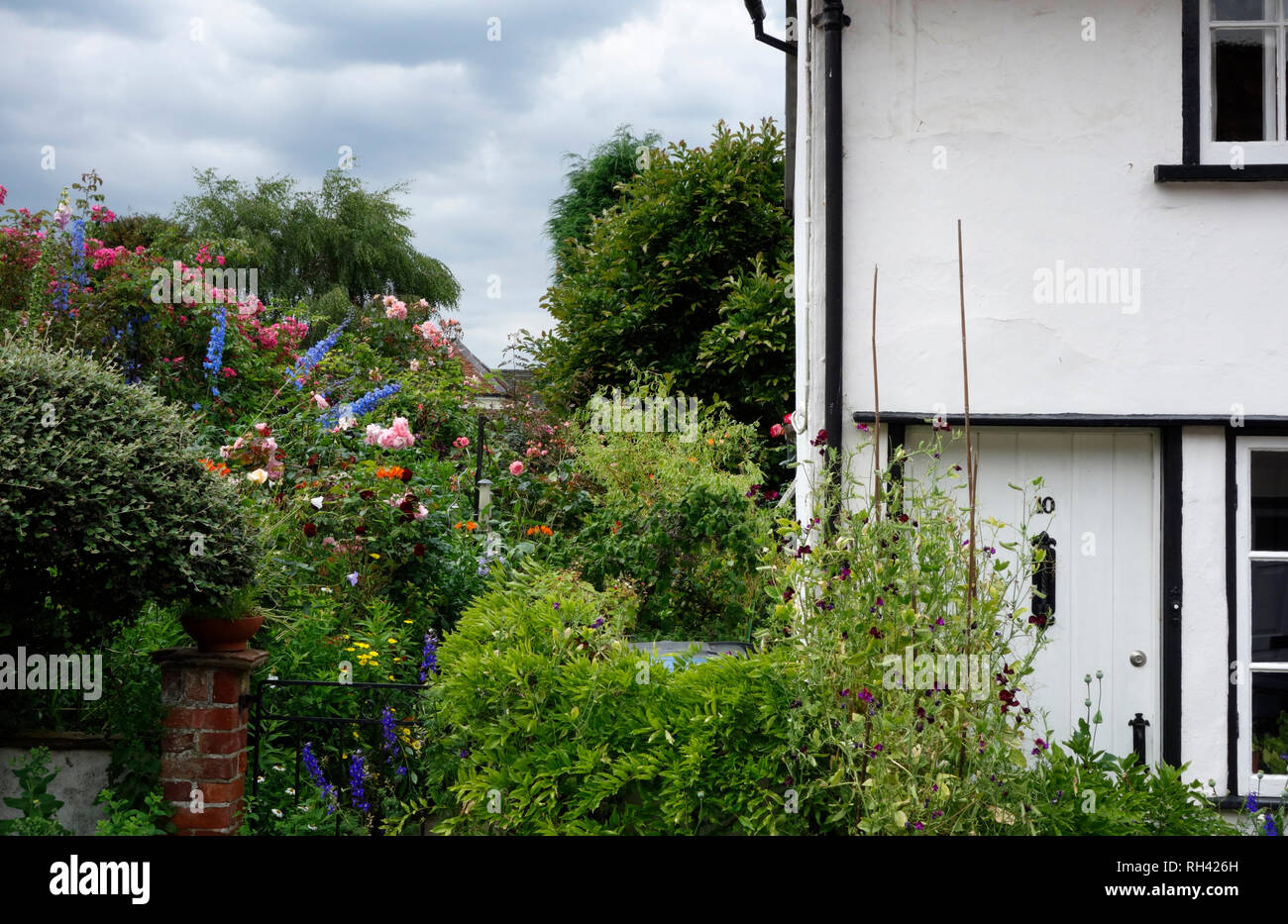 Pretty cottage garden in Lavenham, Suffolk - Stock Image