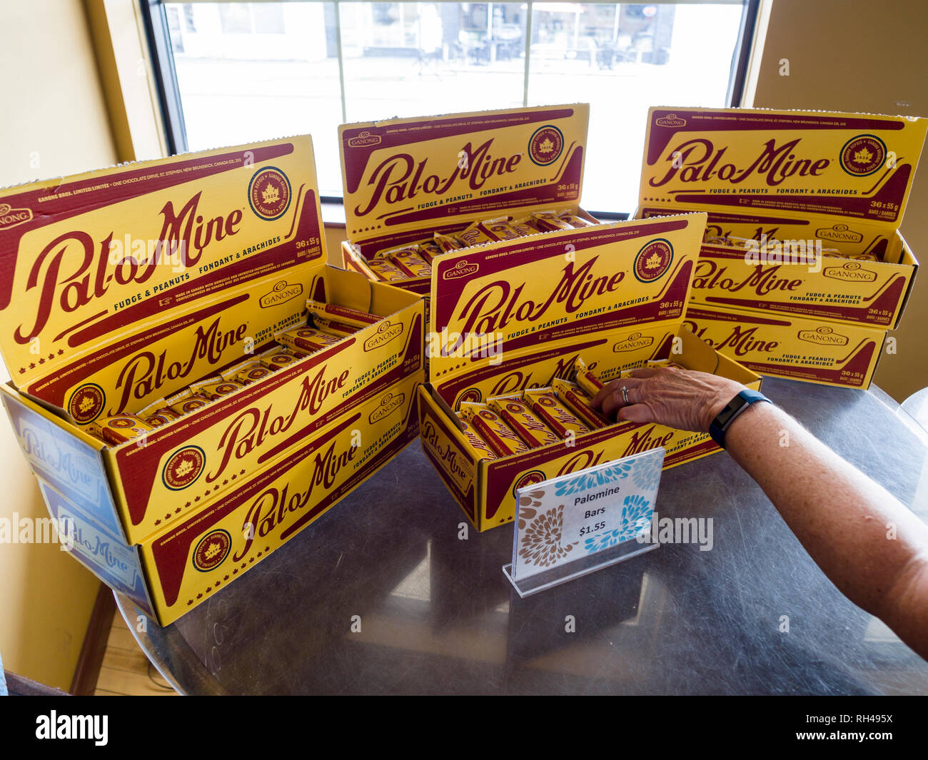 Reaching for a Pal-o-Mine chocolate bar: A woman reaches into a display at the old Ganong factory store for this famous New Brunswick treat. - Stock Image