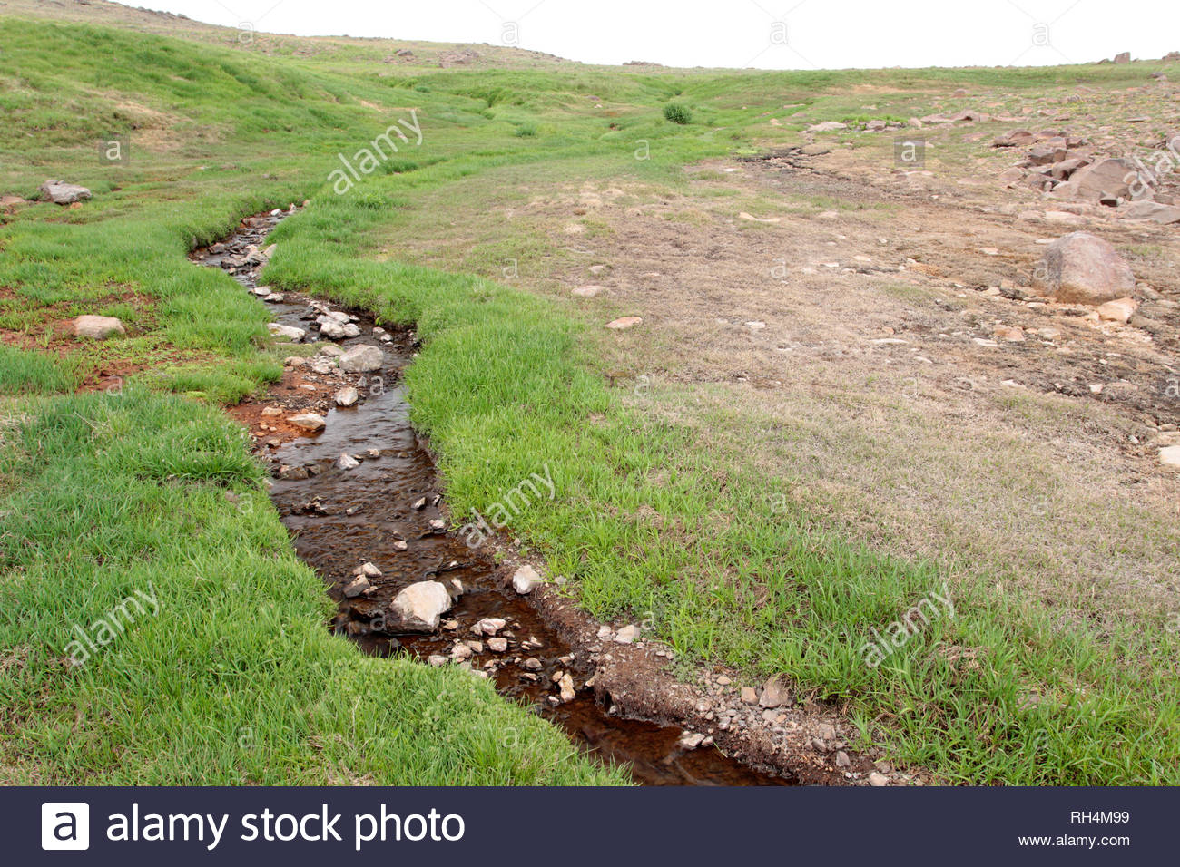 Stream near summit of Steens Mountain Wilderness, Bureau of Land Management, Oregon, USA - Stock Image