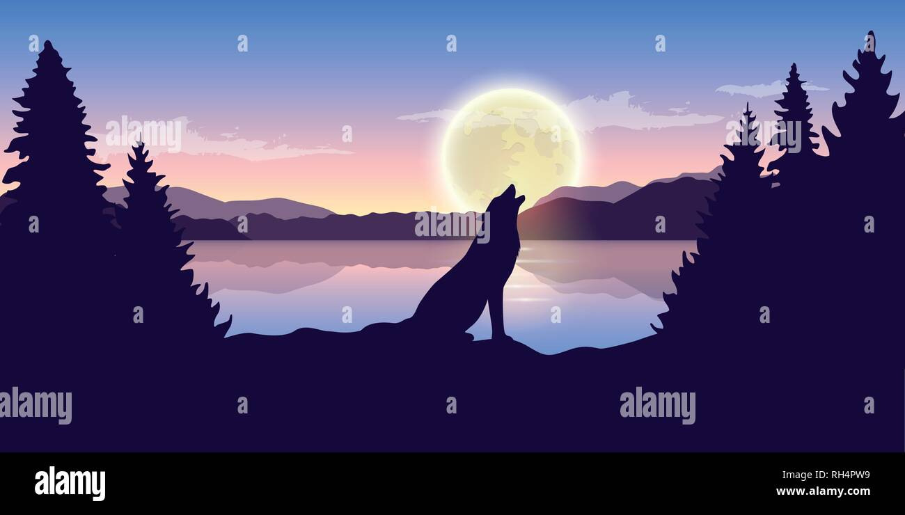 wolf howls at full moon purple nature landscape with big lake vector illustration EPS10 - Stock Image