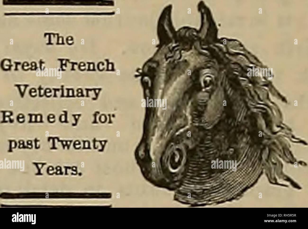 ". Breeder and sportsman. Horses. 316 ^Iie %x£ttLtx atrit jlprjrtsmatt. Nov. 10 AMATEUR CLASS. Length Weight Distance, Deli- Accu- ofRod. of Rod. Feet. cacy. racy. Total. Ft. In, Oz. Thomas W. Olcott 11 5 9$ 70 16 16 10l| ""W- D. Frothingham 11 5 94 70J 9 19 96* W.G.Paddock 116 9i 68 10 20 9« Howard Paddeck 116 9J 78 6 15 98 DaytonBall 116 9 65 8 18 91 B. F.Keeae 10 8 8 67 8 8 8* Stuart G. Spier 110 7 69 B 18 82 Dp. H. L. ""Whitheck 11 6 6£ fio 6 8 78 H. M. Olcott 116 9.i 6a 2 9 74 Moses Stark 10 5 7 56 0 i 60 AMATEUE SECOND 0L4SS. Chas. L.Gove. 10 8 8 C2 6 6 76 H. A.Goffe 10 7 9 57  - Stock Image"