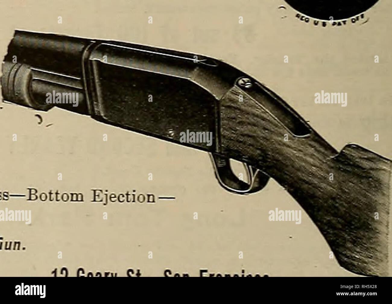 Remington sportsman shotgun value