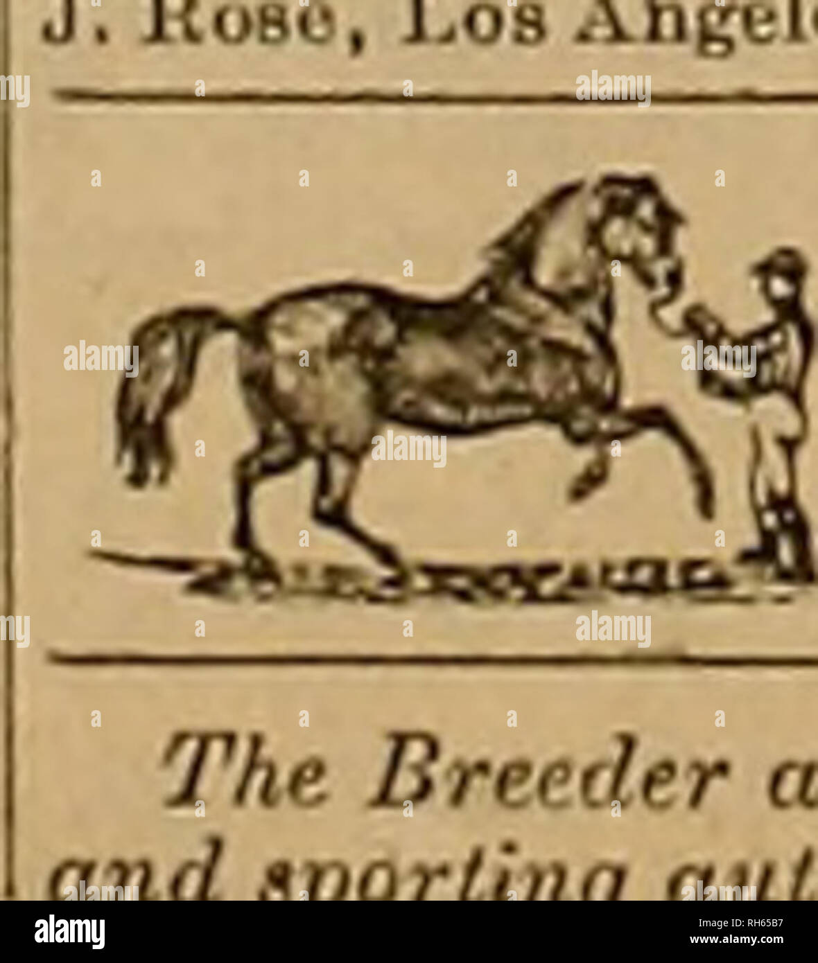 . Breeder and sportsman. Horses. 332 frjfcete aM §p$xlmmu> May 26 RACES. Golden Gate Third District Agricultural & Mechanical Fair Association. DISTRICT 2*0. 1-OAKIA3HD, ALAMEDA COL STY. SPEED PROGRAMME Agricultural Ass'n SPEED PROGRAMME. MONDAY, SEPT. 3, 1883. No I—Bunning: Golden Gate Purse, $500, for all two-year-olds; three-quarter-mile dash; $J00 to first horse, SISO to second ami £50 to third. o — samedav; running Alameda purse, 50OO, for all three-vear-olds; oue-anri-oue-quiirter-niile dash; $300 to first horse. §150 to second, S6.1 to third 0 3—samertav; running: Pardee Purse, - Stock Image