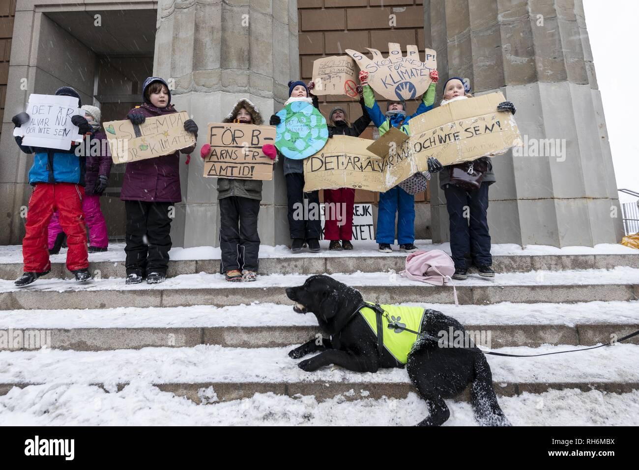 Stockholm, Sweden  1st Feb, 2019  Greta Thunberg, a Swedish