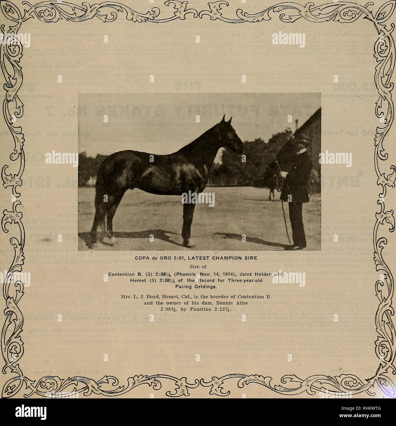 . Breeder and sportsman. Horses. VOLUME LXV. No. 21. SAN FRANCISCO, SATURDAY, NOVEMBER 21, 1914. Subscription—$3.00 Per T««r. COPA de ORO 2:01, LATEST CHAMPION SIRE Sire of Contention B. (3) 2:08^i (Phoenix, Nov. 14, 1914), Joint Holder with Hemet (3) 2:08[4 of the Record for Three-year-old Pacing Geldings. Mrs. L. J. Boyd, Hemet, Cal., is the breeder of Contention B. and the owner of his dam, Bonnie Ailse 2:08%, by Faustino 2:12%.. Please note that these images are extracted from scanned page images that may have been digitally enhanced for readability - coloration and appearance of these ill Stock Photo