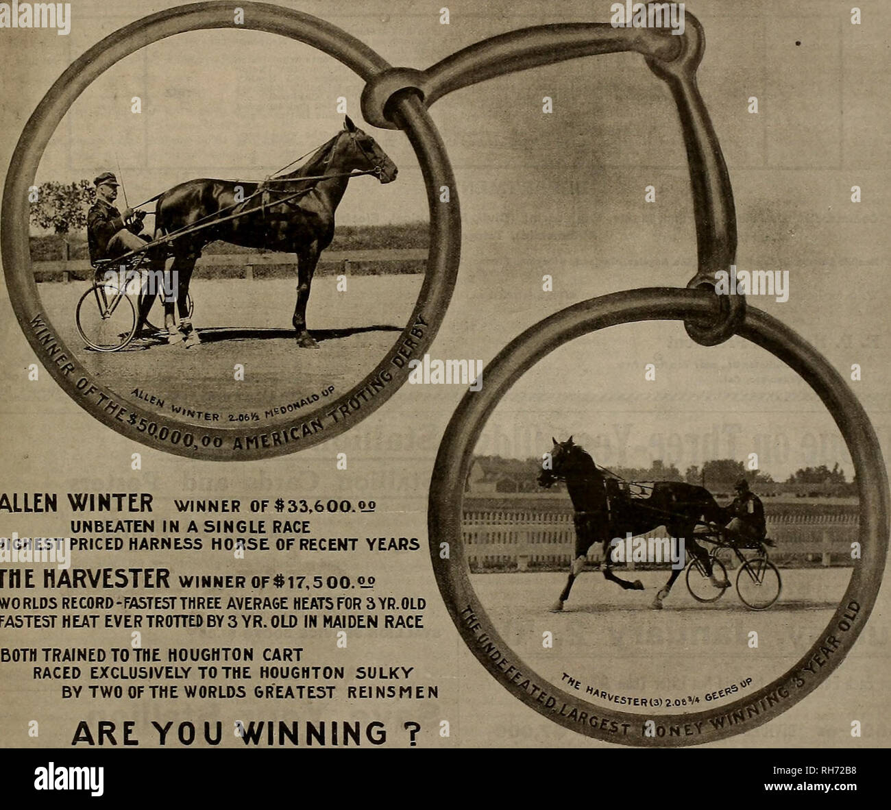 ". Breeder and sportsman. Horses. Saturday, December 26, 190S.] THE BREEDER AND SPORTSMAN ( ™E *i a u its n* twmE a A BIT THE BEST n. ALLEN WINTER winner of #33.600.00 UNBEATEN IN A SINGLE RACE HIGHEST PRICED HARNESS HORSE OF RECENT YEARS THE HARVESTER winnerof#i7,5oo.°° WORLDS RECORD-FASTEST THREE AVERAGE HEATS FOR 3YR.0LD FASTEST HEAT EVER TROTTED BY 3 YR. OLD IN MAIDEN RACE BOTH TRAINED TO THE HOUGHTON CART RACED EXCLUSIVELY TO THE HOUGHTON SULKY BY TWO OF THE WORLDS GREATEST REINSMEN ARE YOU WINNING ? REMEMBER: we are the sole originators of the ""aluminum lined"" wood rims which ha - Stock Image"