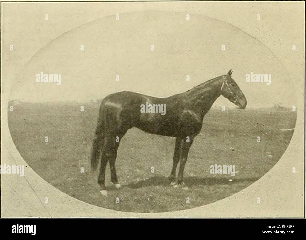 Pre 1906 Stock Photos & Pre 1906 Stock Images - Alamy