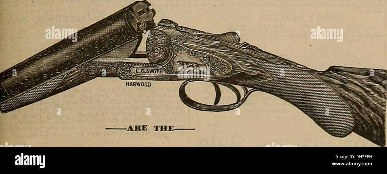 . Breeder and sportsman. Horses. The L, C, SMITH HAMMERLESS GUNS. Leading TRAP GUNS for the United States. ASK YOUE DEALEK FOE THEM. N<-.i<i for Illusti ate<l Catalog^ie- MANOFAOTOBED HY = THE HUNTER ARMS COMPANY, SIHJIESSOKS TO In I', SMITH. FllItiOTl, N. Y.,. Please note that these images are extracted from scanned page images that may have been digitally enhanced for readability - coloration and appearance of these illustrations may not perfectly resemble the original work.. San Francisco, Calif. : [s. n. ] - Stock Image