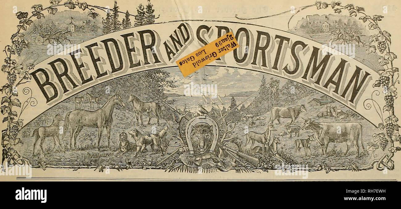 Breeder and sportsman  Horses  Vol  xxxin  No  26  No  22K