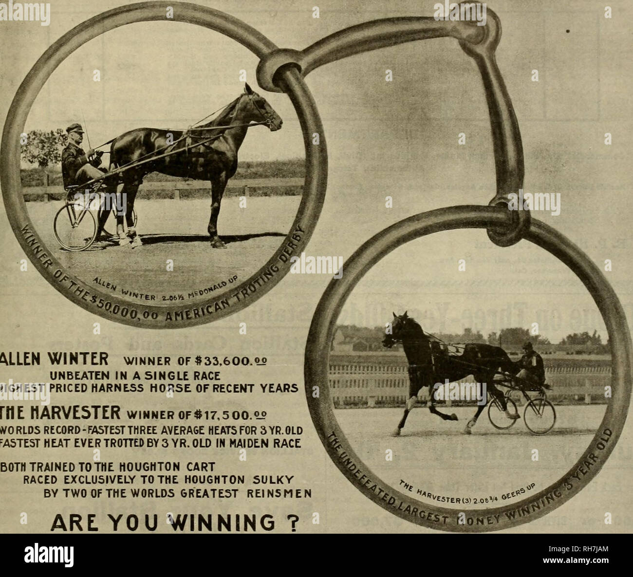 ". Breeder and sportsman. Horses. Saturday, December 26, 190S.] THE BREEDER AND SPORTSMAN m n a u; b n i y «ii,me <* A BIT THE BEST •^. ALLEN WINTER winner of $33,600. oj> UNBEATEN IN A SINGLE RACE HIGHEST PRICED HARNESS HORSE OF RECENT YEARS THE HARVESTER winnerof$i7,soo.°° WORLDS RECORD-FASTEST THREE AVERAGE HEATS FOR 3YR.0LD FASTEST HEAT EVER TROTTED BY 3 YR. OLD IN MAIDEN RACE BOTH TRAINED TO THE HOUGHTON CART RACED EXCLUSIVELY TO THE HOUGHTON SULKY BY TWO OF THE WORLDS GREATEST REIN5MEN ARE YOU WINNING ? REMEMBER: we are the sole originators of the ""aluminum lined'"" wood ri - Stock Image"