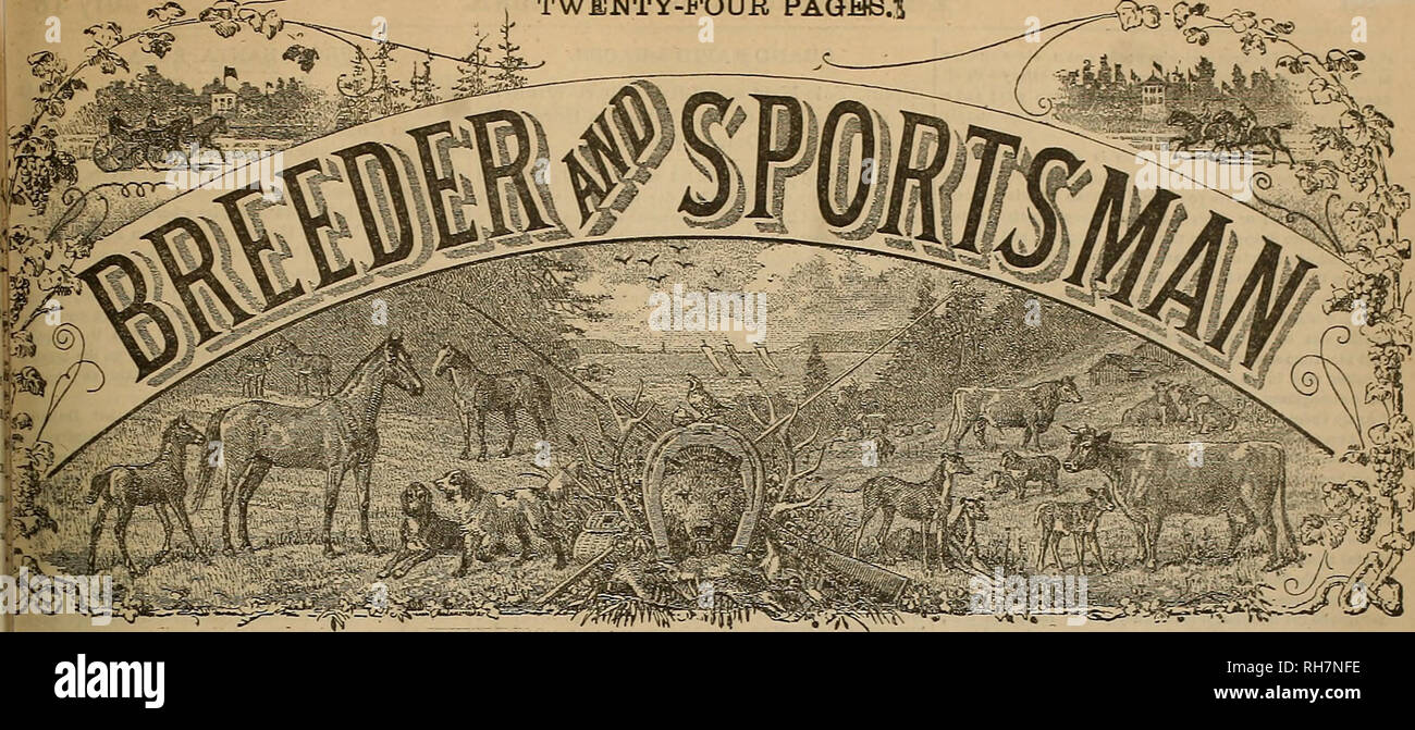 . Breeder and sportsman. Horses. TWENTY-FOUR PAGHS.'S. Vol XIX. No 3. No. Â«1» BObH STB.EET. SAN FRANCISCO. SATURDAY, JULY 18, 1891. SUBSCRIPTION FIVE DOLLABf A YEAB. FAUNTLEROY. The Old Groom's Luck. Bt Benjamin F. Butleb, Ja. :â Mow look here, Jack; I know this track' I got It all by rote, I'm agoiog to back the Gav'nor's back, For a twenty-dollar note. 'E'b'ealthv an'Bouud.an' be'll swaller the ground With one o' them bursts or spaed. The rac* U a walk -yoa hear me talklâ With Fauntleroy in tbe lead. Twenty dollar* on Fauntleroy, And tbe odds a hundred to one, When tbey get tt tbe post I'm - Stock Image