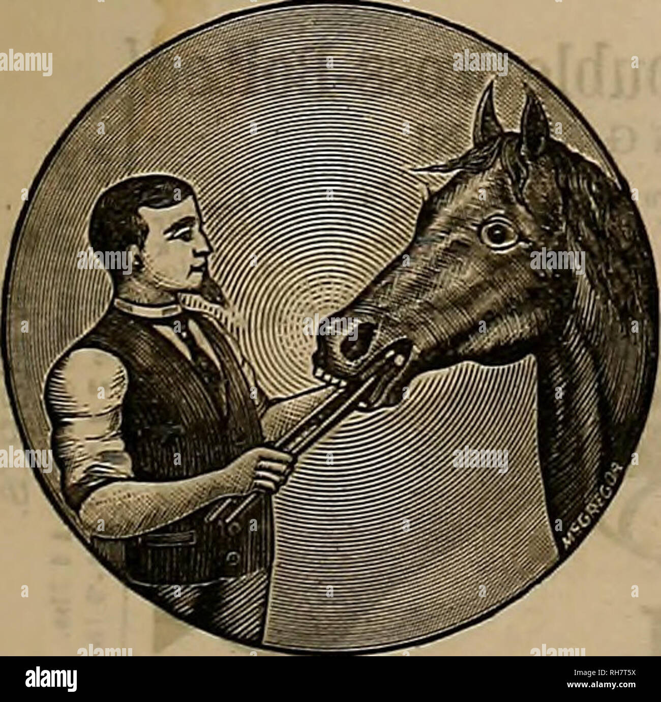""". Breeder and sportsman. Horses. 1889 lltje %ttt&xx atwl Jporctsmatt. 127 HIGH-CLASS PEDIGREE STOCK ESTABLISHED 1882. We have for Private Sale selections of the follow- ing Stock, procured from the best studs of Great Britain, America and Australia. ALL SUITABLE FOB HIGH-OLASS STOD POItPOSES HORSES. BLOOD, COAOHEBS, TBOTTEES, ARABS, DRAUGHT, PONIES. CATTLE. DCRHAMS, DETONS, HEREFORDS, POLLED ANGUS, AYBSHIRES, JERSEYS. PIGS. IMPROVED BERKSHIRES, """"MAGIE,"""" POLAND CHINA, ESSEX, WHITE YORKSHIRE, 4c. ALL IMPORTED STOCK. EXHIBITION POULTRY Supplied to win in the keenest competition. Cho - Stock Image"""