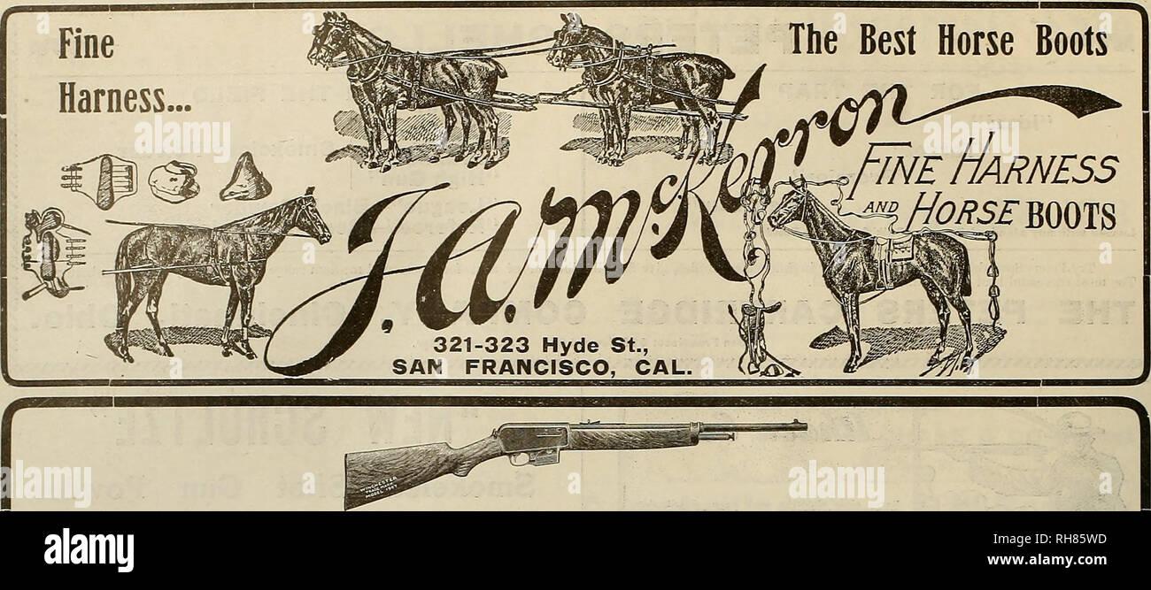 Winchester Guns Stock Photos & Winchester Guns Stock Images