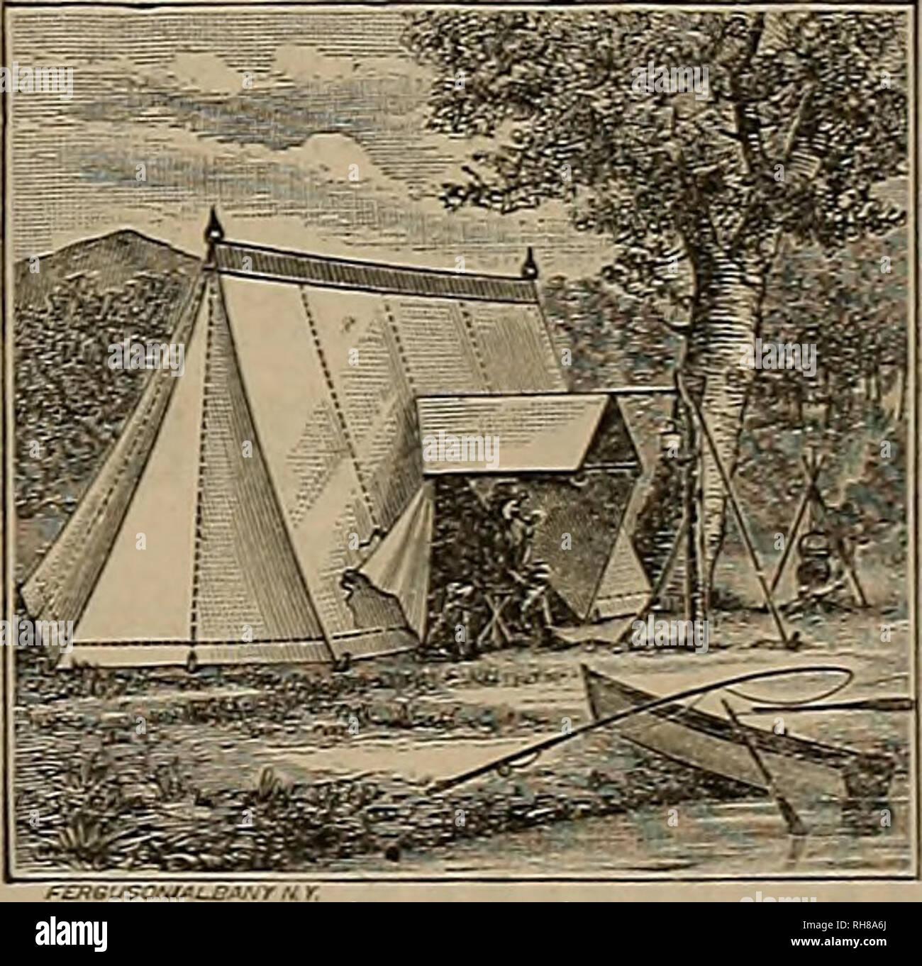 Breeder and sportsman  Horses  1887 ^hz IPmte anil ,f