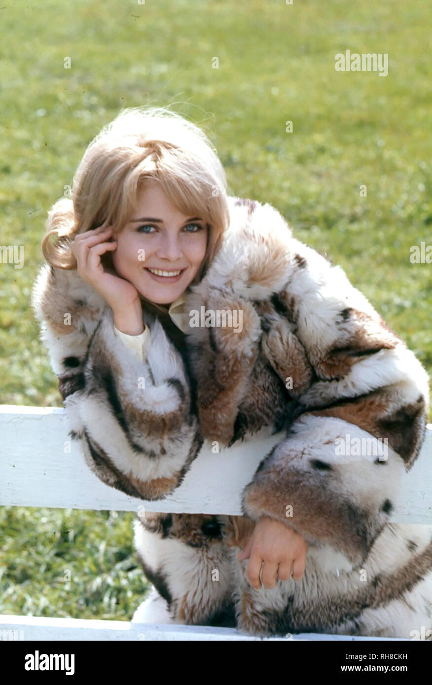 SUE LYON American film actress about 1967 - Stock Image