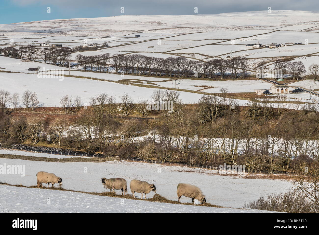 North Pennines AONB Landscape. Towards Ettersgill, Teesdale with a covering of snow and bright winter sunshine Stock Photo