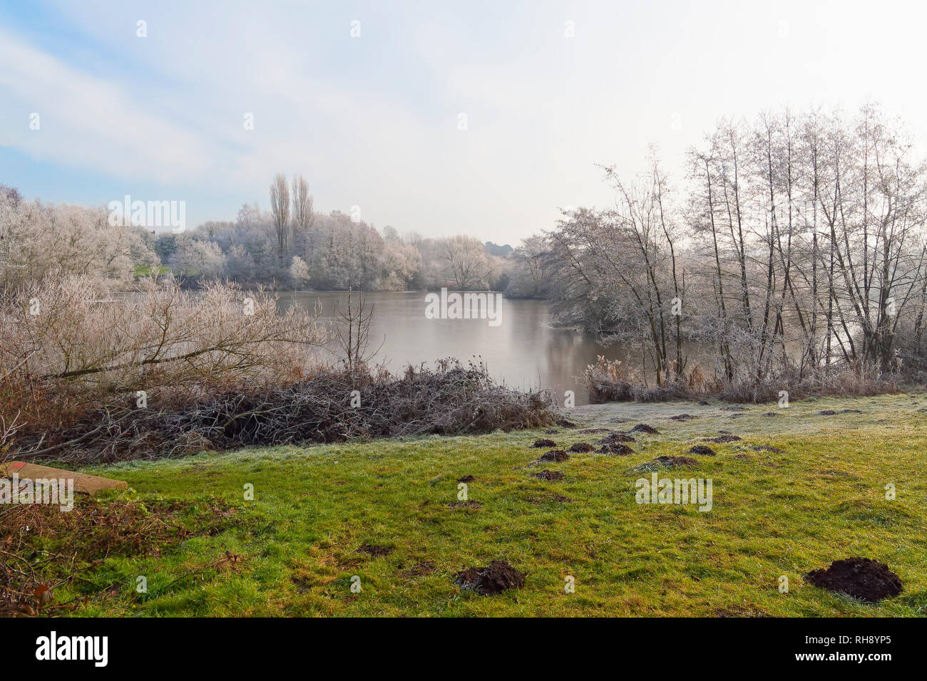 Molehills On The Banks Of A Lake Lead Down To The Water On A Cold Frostt And Misty Winters Morning Stock Photo Alamy