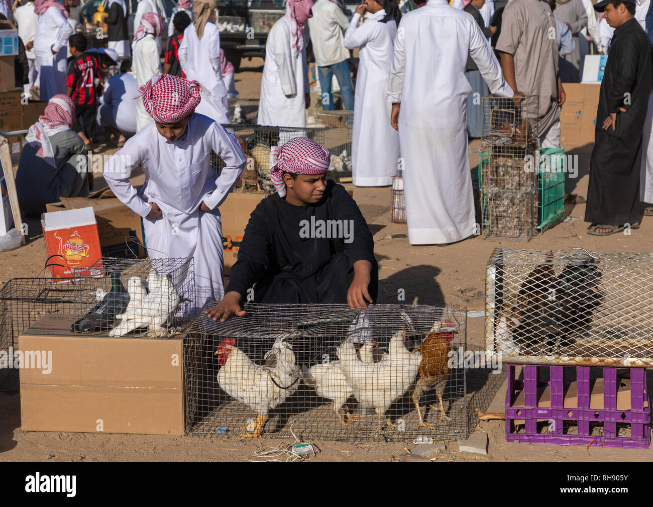Saudi people in the bird and poultry market, Najran Province