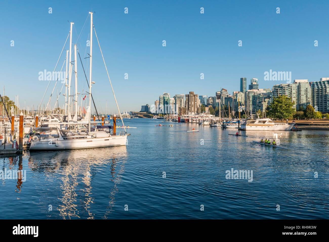 Marina with sailboats, back city centre with skyscrapers, Coal Harbour, Vancouver, British Columbia, Canada - Stock Image