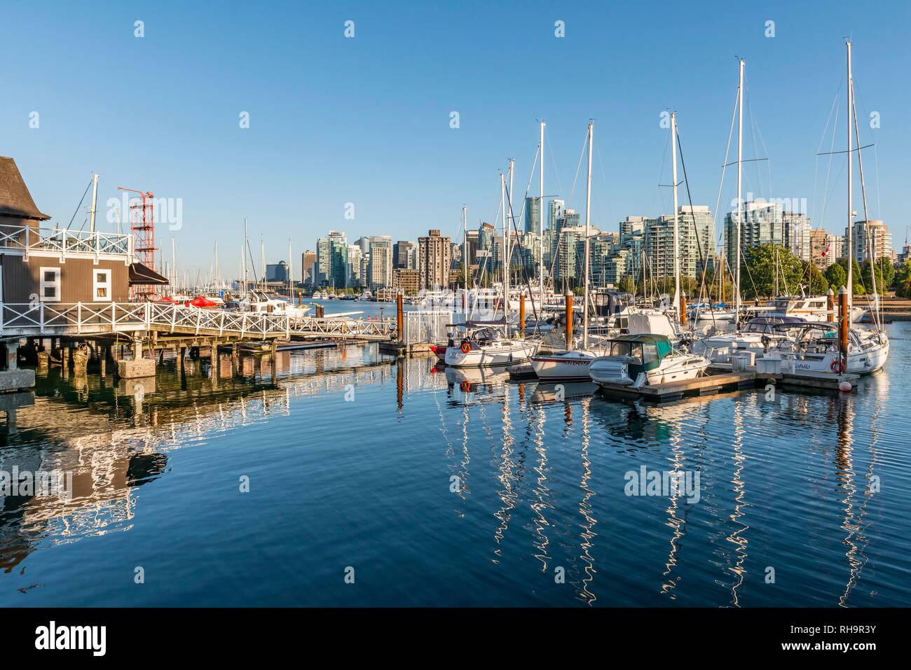 Marina with sailboats, back city centre with skyscrapers, Coal Harbour, Vancouver, British Columbia, Canada Stock Photo