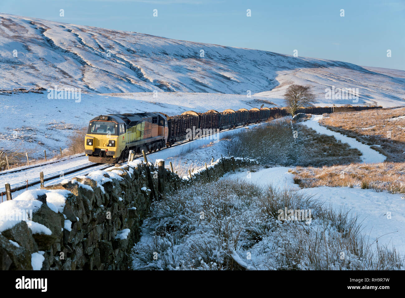 Train transporting logs to the Kronospan paper works at Chirk, here heading south on the Settle-Carlisle railway line at Ribblehead, North Yorkshire - Stock Image