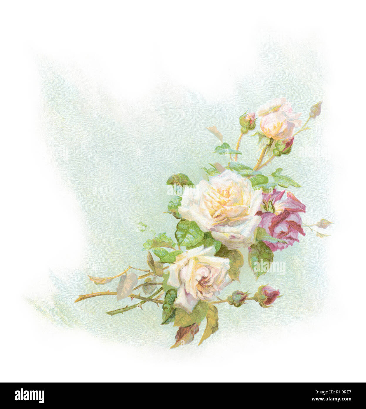 Antique c1890 chromolithographic illustration of a rose bouquet, printed in Germany. SOURCE: ORIGINAL MARRIAGE BOOKLET. - Stock Image