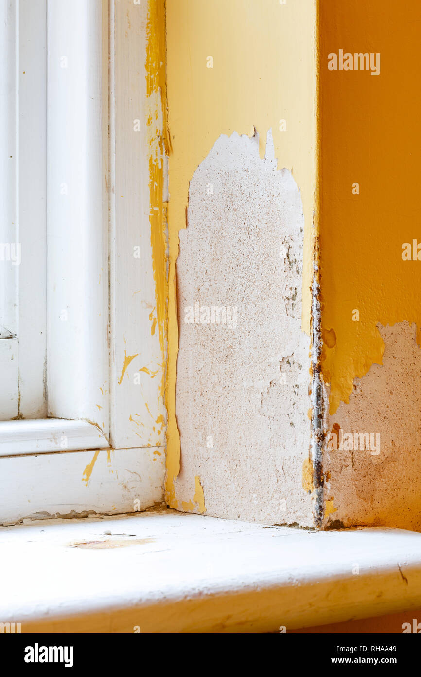 Damp and water ingress coming through a house wall - Stock Image